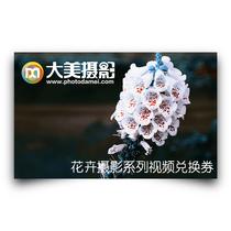 大美摄影:花卉摄影系列视频课程兑换券