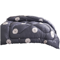 赛岙芦荟棉冬被保暖秋冬被子被褥重3斤150x200cm