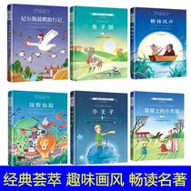 国际大奖儿童文学小说(精装珍藏版全6册):小王子、绿野仙踪、柳林风声、兔子坡等